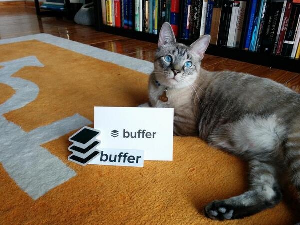 One of Buffer's fans, @KittyCatKismet, with Buffer swag