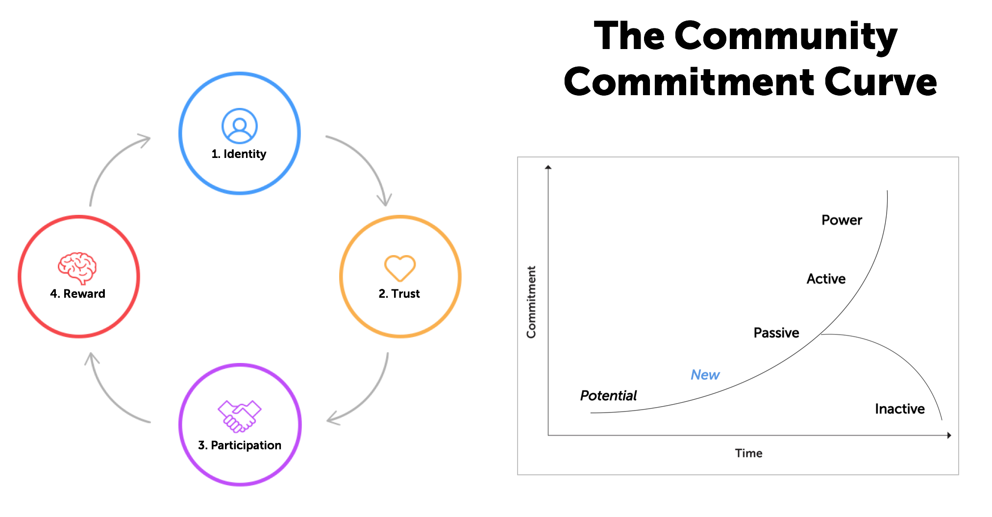 Commitment Curve
