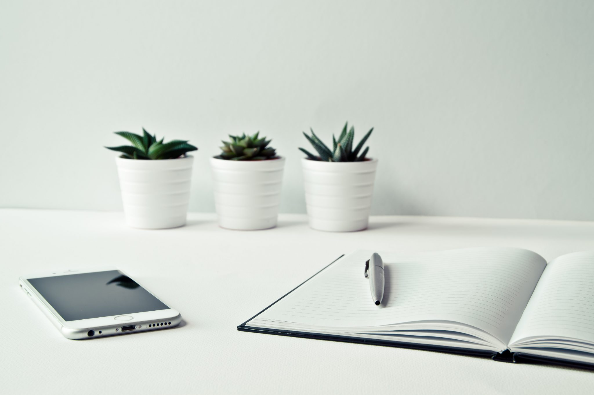 5 Things to Do in a New Community Manager Role | CMX